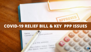COVID-19 Relief Bill & Key PPP Issues