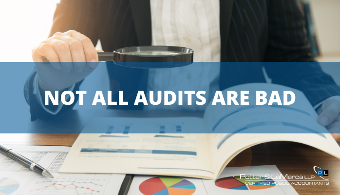 Not All Audits Are Bad